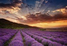 Дивовижно красиві місця світу: 10 локацій, де перехоплює дух від вражень!