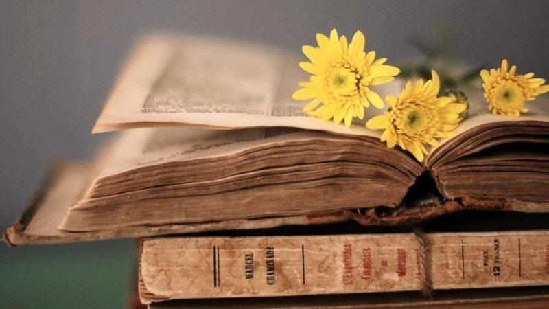 паперові книги