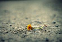 7 простих способів, як позбутися негативної енергії та усунути стрес