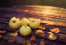 Красиві вірші про осінь українською мовою