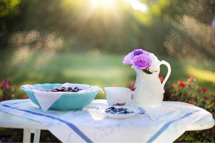 ранок, сад, сніданок