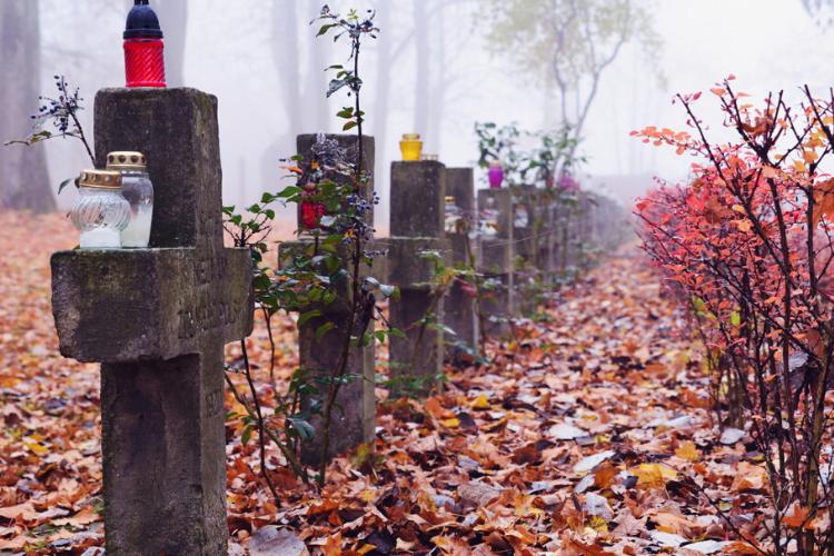 цвинтар, кладовище, лампадки, хрести