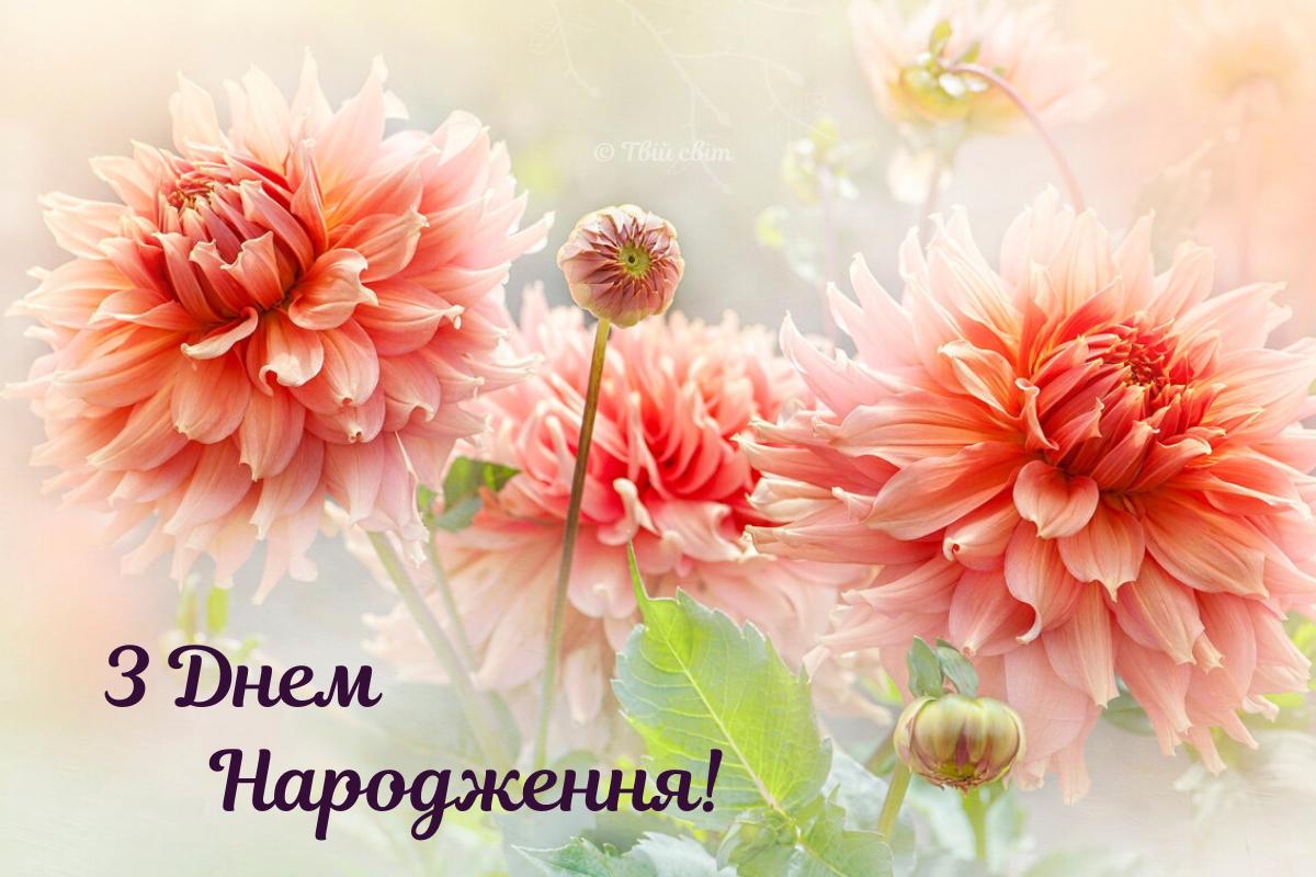 листівка, вітання з днем народження українською