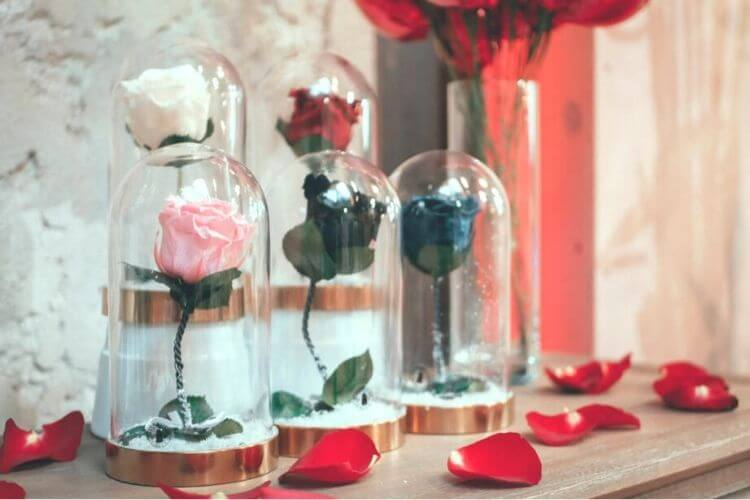 квіти у вакуумі